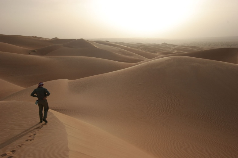 novembre mauritania